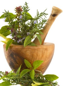 The Doctors: Are Wild Plants Safe To Eat?
