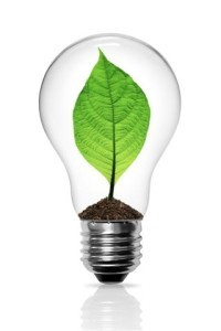 Today Show Energy Efficient Light Bulbs Watts To Lumens