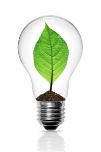 Today Show Light Bulbs