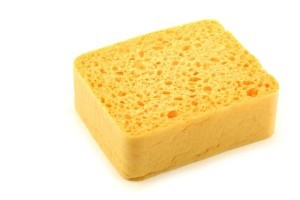Today Show: How To Clean Sponges