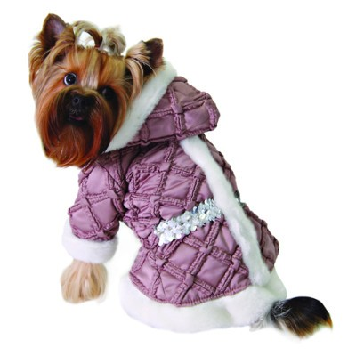 Dog Fashions: Dog Parka, Argyle Sweater & Raincoat | Dog Adoption