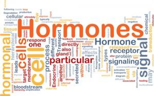 The Doctors: Hormones & Natural Solutions