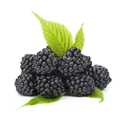 Dr Oz said Black Raspberry Supplements could prevent Cancer.