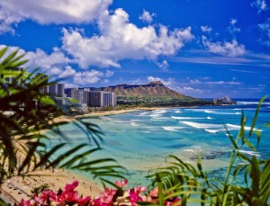 Ellen: Hawaiian Honeymoon