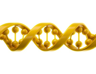 The Drs: Stem Cells