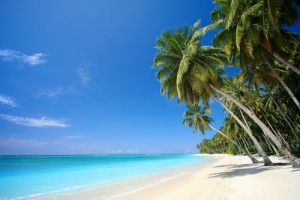 Dr Oz: Island Vacation Giveaway