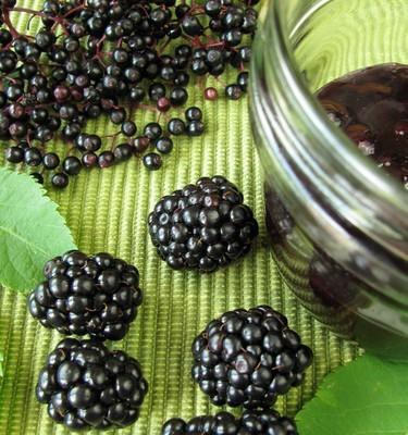 Dr Oz: Black Elderberry Syrup, Hidden Salt & Snack Personalities