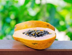 Papaya Seeds & Wormwood Tea: Dr Oz