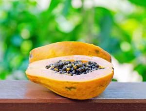 Papaya Seeds & Wormwood Tea: Dr Oz