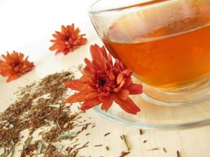 Dr Oz Weight Loss Worldwide: Rooibos Tea