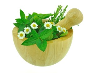 Feverfew Remedy: Dr Oz July 5 2012