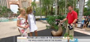 The ladies had Today Show's Call of the Wild in the Bahamas & took a look at sea creatures, including starfish, sea lions and sea cucumbers.