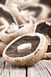 Mushroom Tempura Recipe: Kathie Lee & Hoda