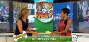 Dog Trivia: Breed of Scooby-Doo, Lassie's First Movie & 101 Dalmatians