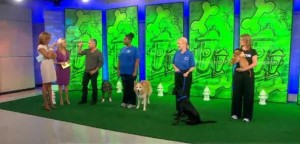 Cesar Millan 'Leader of the Pack' Review & National Family Pack Walk