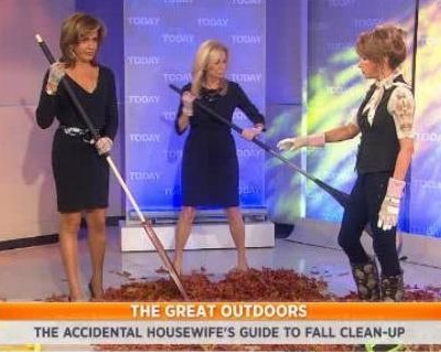 Kathie Lee and Hoda talked to Julie Edelman, who shared fall cleaning tips, including Gutter Tools, Dsolv Leaf Bags, Clog Free Rake and Leaf Scoops reviews.
