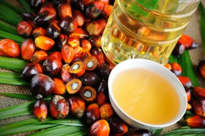 Dr Oz: Red Palm Oil Dosage, Lower Cholesterol & Omentum Belly Fat