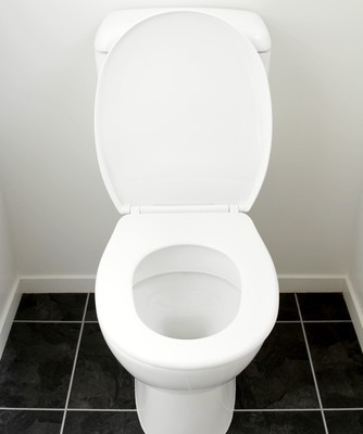 How Often Should You Poop? How Many Times a Day Should You Poop Dr Oz?