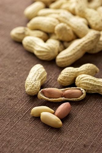Introducing High Allergen Foods