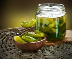 Dr Oz: Duggar Family Homemade Pickle Recipe & Homemade Wet Wipe Recipe