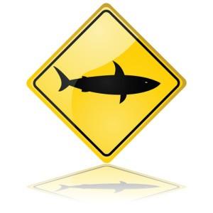 The View: Shark Tank Entrepreneurs, Drop Stop & Litter Jewelry Reviews