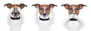 Jay Leno Headlines: Blind Ear Vs Deaf Eye & Bullwinkle's Restaurant