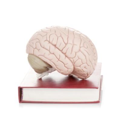 The View: Lior Suchard Mind Reader Tricks & Mentalist Powers