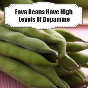 Dr Oz Dopamine Diet Guidelines, Tyrosine Review & Edamame Puree Recipe