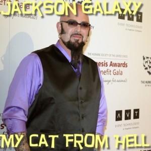 "Ellen:Jackson Galaxy ""Cat Daddy"" Review & Tess Meets Casting Director"