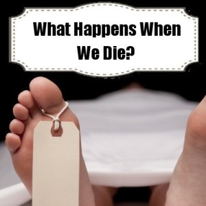 About what happens after we die and why we shouldn t be scared