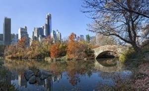 The View: Central Park Conservancy, Harlem Meer & Gray's Papaya Review