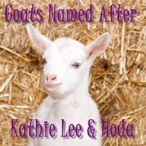 Kathie Lee & Hoda Goats, Kid Celebrity Look-Alikes & Unwined Candles