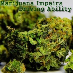 The Drs: My 420 Tours Denver CO & Marijuana Impairs Driving Ability