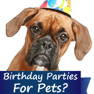 Kathie Lee & Hoda: Pet Birthday Party & Menopause Causes Memory Loss?