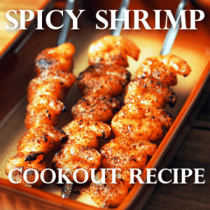 Kathie Lee & Hoda: Spicy Grilled Shrimp With Watermelon In Chimichurri Sauce Recipe