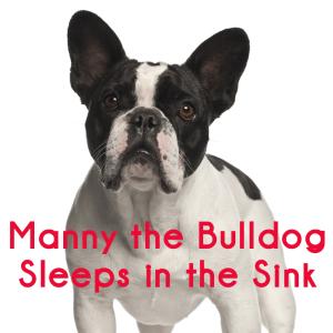Steve Harvey: Manny the Bulldog Sleeps in Sink & Budget Summer Parties
