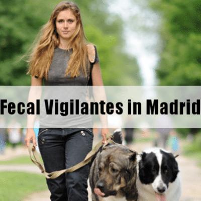 Kelly & Michael: Fecal Vigilantes in Madrid & Little League Parents