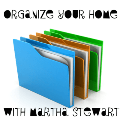 Martha Stewart Home Office: Wall Manager & Staples Discbound Notebooks