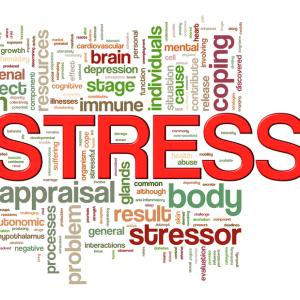 Dr Phil: Warning Signs of Bipolar Disorder & PNP Center Treatment