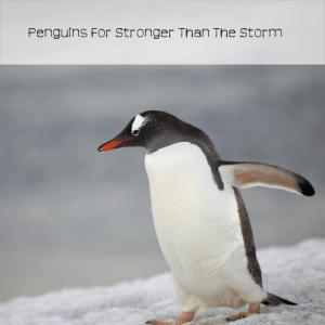 Jenkinson's Aquarium South African Penguins & Flower Cosmetics Review