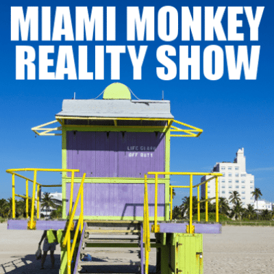Big Ang Miami Monkey Reality Show + Hungry Hottie Cookbook Review