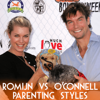Rebecca Romijn Survival Swimming Classes & iPad Classes for Dogs?