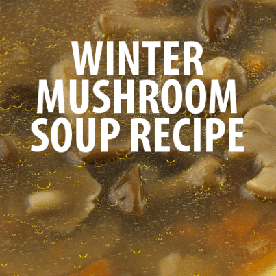 Prepare a great winter meal with this Marsala Mushroom Soup Recipe ...