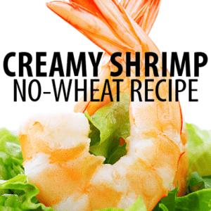 Dr Oz: Wheat Belly Creamy Shrimp Marinara Recipe & Chicken Wrap