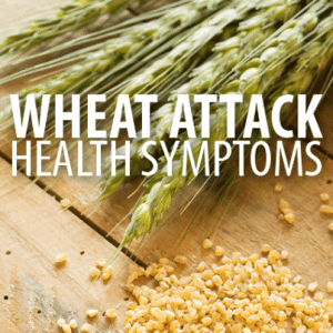 Dr Oz: Wheat Attack Symptoms & Wheat Belly Diet Unlimited Foods