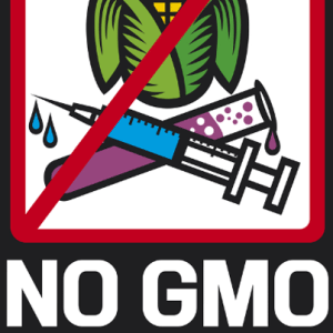 Dr Oz Stealth GMOs: Are GMO Foods Natural? Labeling Increases Cost?