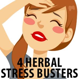 Dr Oz Herbal Stress Busters: Ashwagandha, Rhodiola + Astragalus