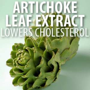 Dr Oz: Artichoke Leaf Extract & Asparagus Prebiotic for Cholesterol