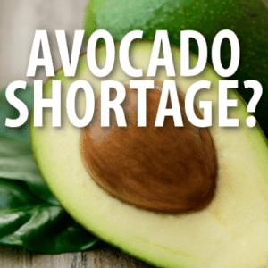 "Avocado Shortage, ""Let It Go"" EGOT Winner + Vegas Blackout Drunk"