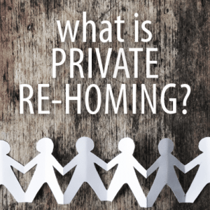 Today Show: Private Re-Homing, International Adoption & Survivor Nina